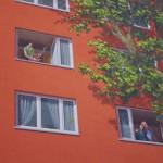 Harmonisches Zusammenleben - Da muss man den Verstärker schon sehr aufdrehen, damit sich die Nachbarn in ihrer Ara-Ruhe stören lassen (Foto: André Franke)