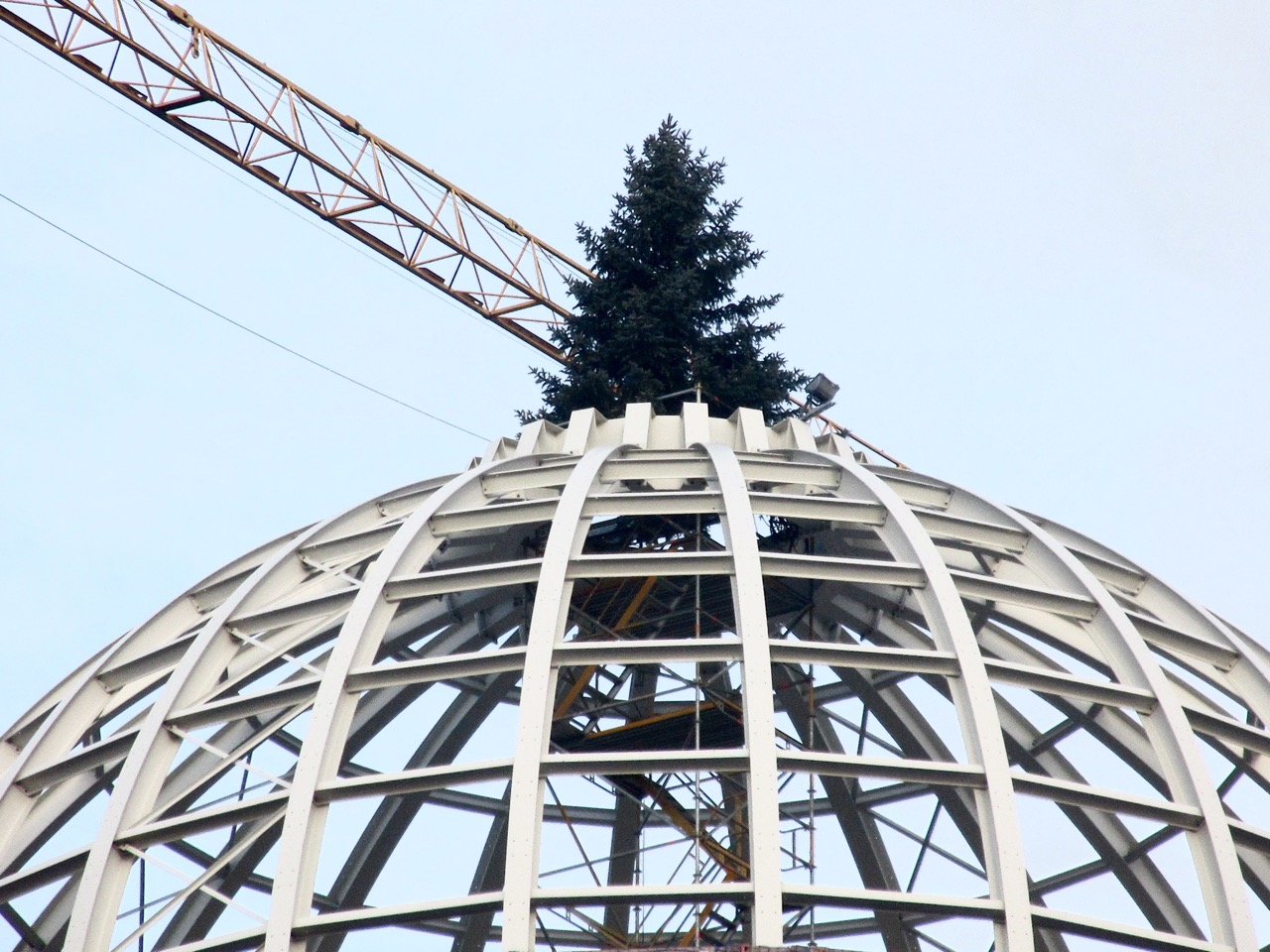 Schlosskuppel mit Weihnachtsbaum