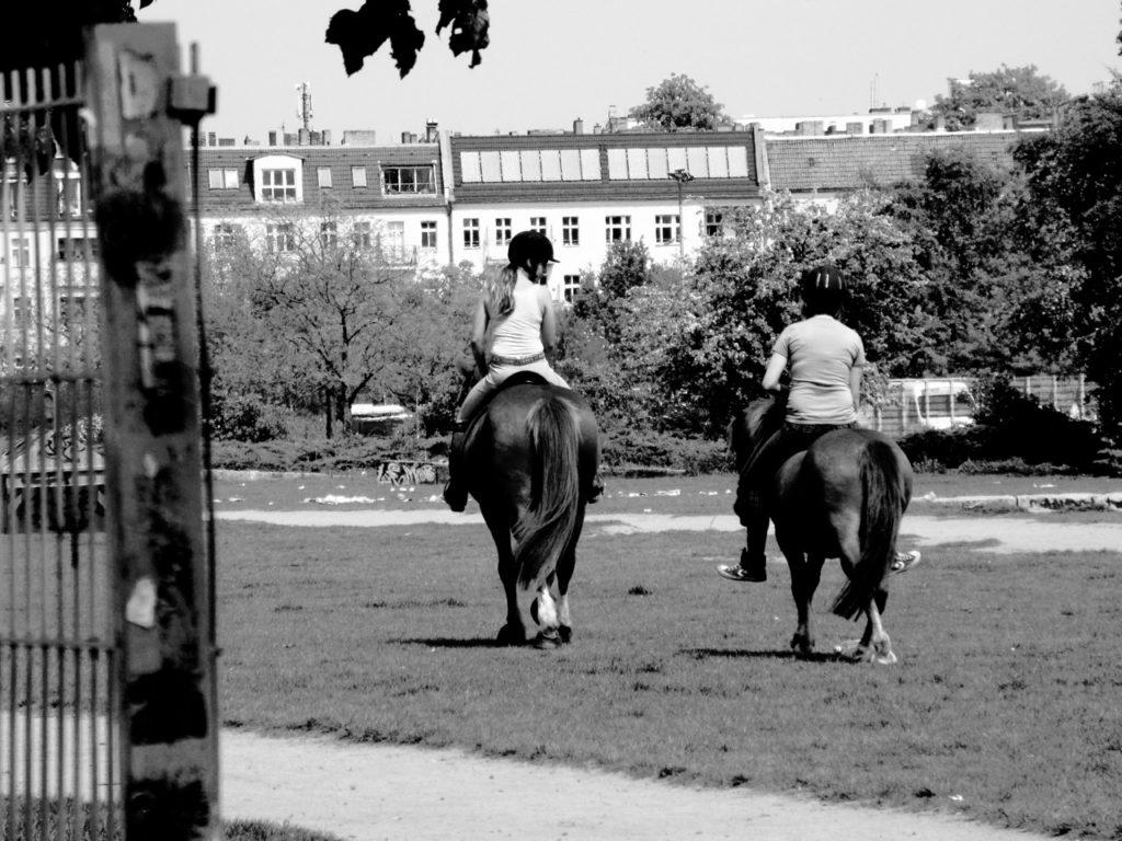 Pony-Reiten durch den Mauerpark. Nur im Freiraum möglich (Foto: André Franke)